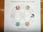 Mandala Artists Mandala - 07