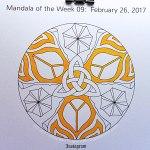 MotW 2017-09: 01 - MarigoldMotW 2017-09: 01 - Marigold